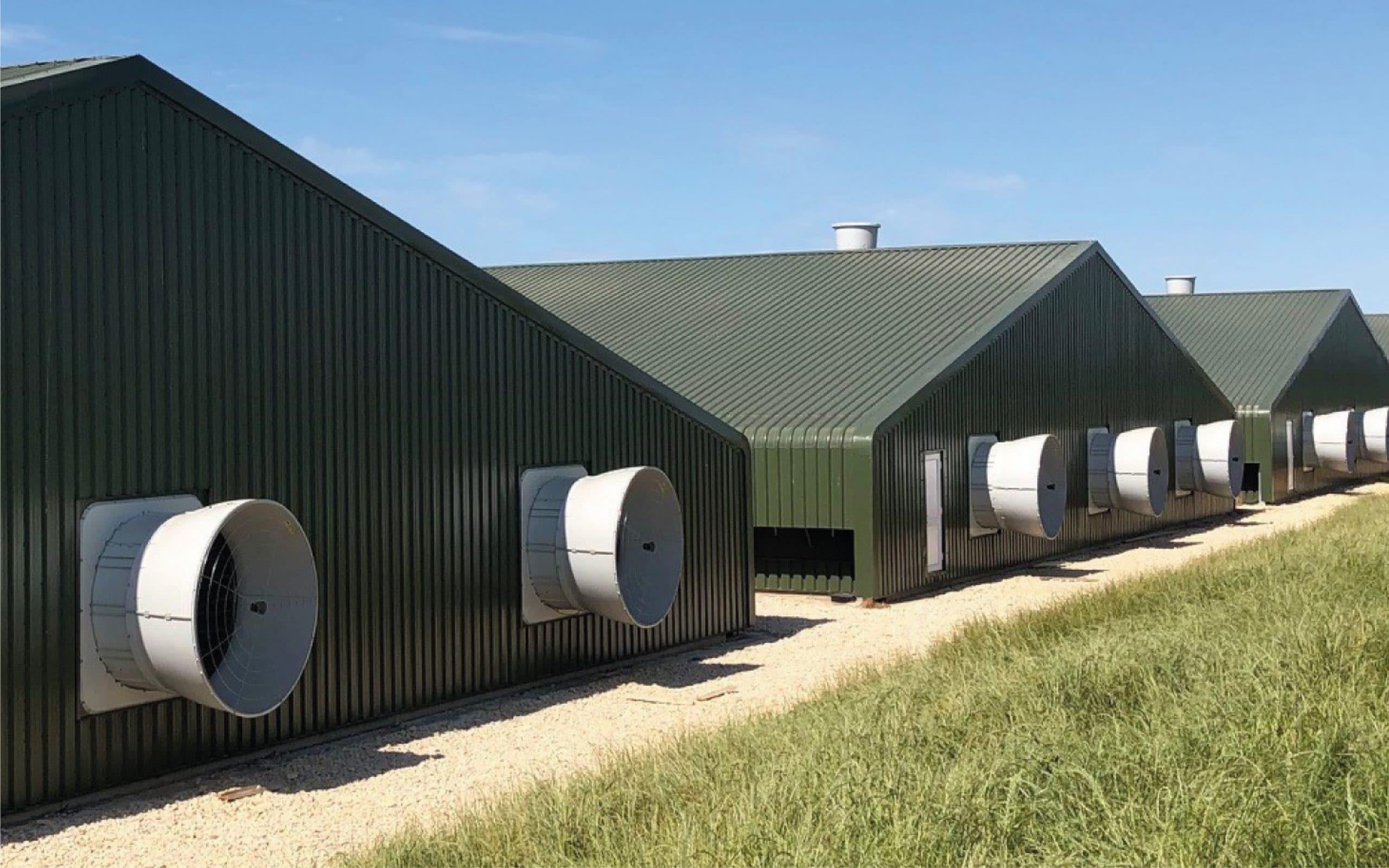 Ứng dụng mô phỏng CFD để kiểm soát khí hậu trong chuồng trại chăn nuôi